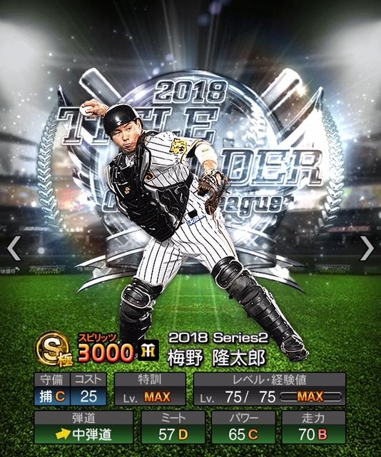 2018-th-梅野龍太郎