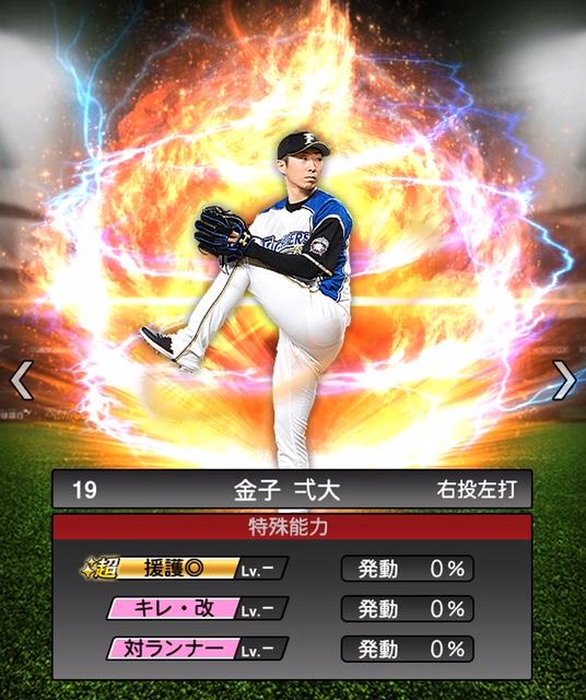 2019-s2-金子弌大-特殊能力